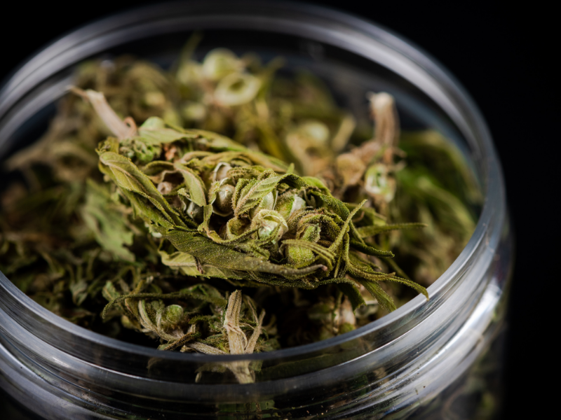 CBD Herb