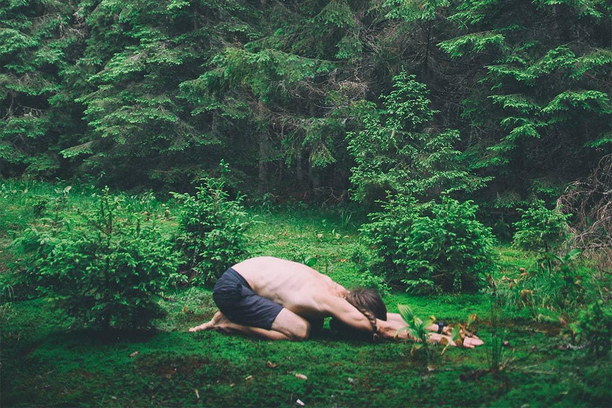 plant medicine and yoga